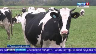 Депутаты обсудили развитие АПК Смоленского региона в 2017 году