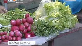 Горячая линия по качеству овощей и фруктов стартует 1 июня в Иркутской области