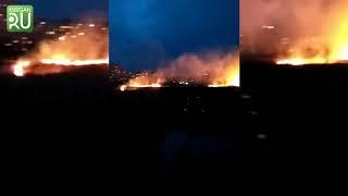В Кургане за один день сгорели целые гектары в Рябково и Заозерном