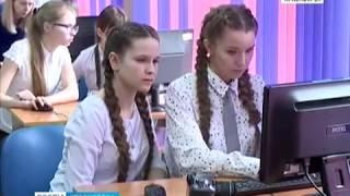 Ученики красноярской школы №53 разработали специальные паспорта для бездомных собак