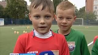 """""""Птенцы Воронина"""": как растят будущих звёзд футбола в Калининграде"""