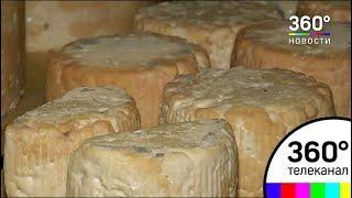 Уникальный десертный сыр с карамельным вкусом готовятся сварить в Подмосковье
