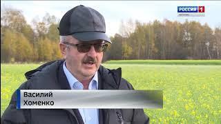 """В СПК """"Родина"""" в Костромской области завершают пастбищный сезон"""