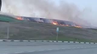 На Ставрополье начали гореть поля
