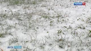 Пермякам пообещали ливневые снегопады, ветер и мороз