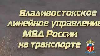 Транспортные полицейские Владивостока пресекли канал поставки наркотиков из Амурской области