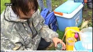 Качество воды в Байкале проверят учёные