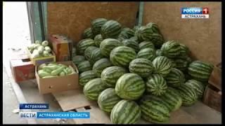 В Астрахани продолжают борьбу с незаконной торговлей