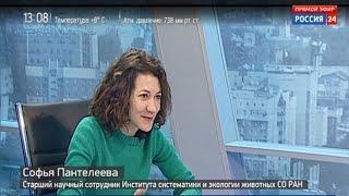 В Академгородке проведут научный бар-хоппинг