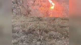 В Ставрополе ветки деревьев упали на провода и загорелись