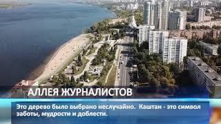 На набережной Самары состоится закладка аллеи журналистской солидарности
