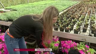 В Томске готовятся к высадке растений на городских улицах