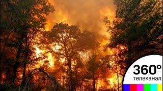 И-за лесных пожаров в Амурской области введен режим ЧС - СМИ2