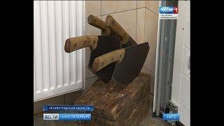 Вести Санкт-Петербург. Выпуск 11:25 от 15.11.2018