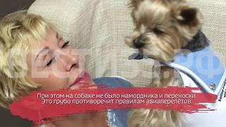 Любовь Успенская устроила драку в самолёте