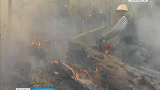 Красноярск затянуло дымом от лесных пожаров