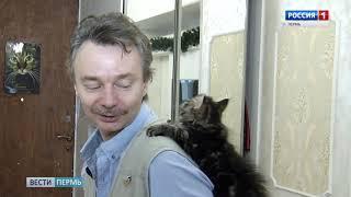 Говорящему коту подрастает достойная смена