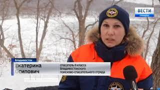 Четвероногие работники МЧС прошли испытание снегом