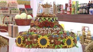 «Край аграрный». Сельхозвыставка «Золотая осень» и питомник саженцев