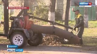 В Барнауле прошёл общегородской субботник