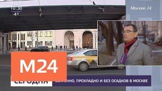 Солнечная и прохладная погода установилась в Москве - Москва 24