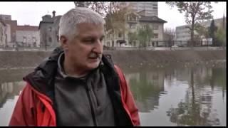 В Карякинский пруд запустили новую партию рыб