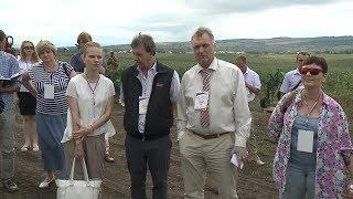 Учёные из России и Германии оценили плодовые сады в Минводах