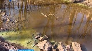 Власти Калининграда предупреждают калининградцев о необычном цвете воды в городских ручьях