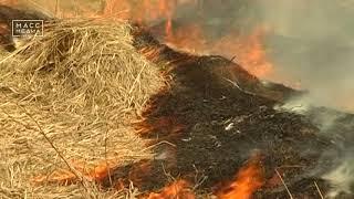 Особый противопожарный режим введен еще в двух районах Камчатки | Новости сегодня | Происшествия