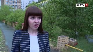 Вандалы продолжают разрушать сквер Целинников