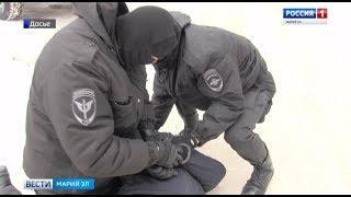 Йошкаролинец получил 7 лет лишения свободы за соучастие в сбыте наркотиков - Вести Марий Эл
