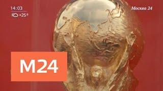 Дорогой трофей. В Москву прибыл Кубок чемпионата мира по футболу - Москва 24