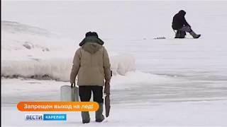 Анонс Выход на лёд