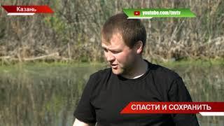 Когда-то Чайковое озеро было прозрачным: субботник по очистке водоёма 08/09/18 ТНВ
