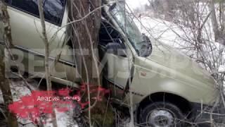 """""""Нексия"""" вылетела с дороги и врезалась дерево"""