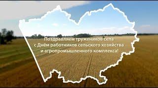 Поздравление глав районов Алтайского края с Днём работников сельского хозяйства