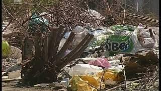 Челябинская область погрязла в свалках  ОНФ нашел 400 незаконных площадок с отходами