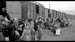 Трагическая одиссея. Турки-месхетинцы почтили память жертв депортации