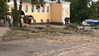 Пензенцам разъяснили, зачем возле сквера Лермонтова вырубили вековые деревья