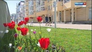 """Прокурорский надзор"" 19.05.2018"