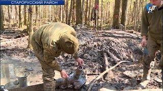 В Старорусском районе идет поисковая операция на месте падения советского бомбардировщика