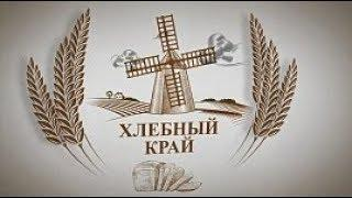 «Хлебный край»: о ситуации на полях с озимыми