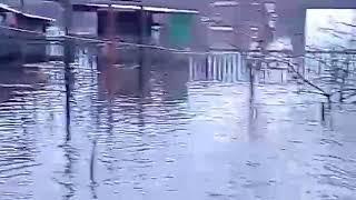 Потоп в Калачеевском районе