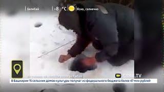 Мобильный репортер - 09.02.18