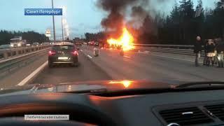 Семь человек погибли в результате ДТП с микроавтобусом в Петербурге. Новости Первый канал.
