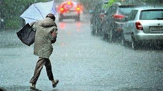 В Югре ожидаются сильный ветер и дожди с грозами