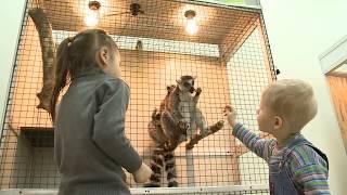 Выставка экзотических животных открылась в Череповце