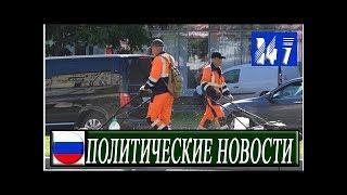 Власти зарезервировали деньги для восстановления газонов в Москве после ЧМ по футболу|Политические