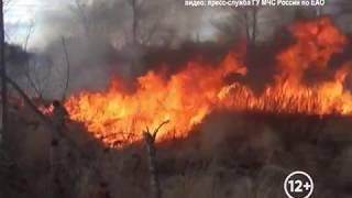 Слухи о замымленности Хабаровска из-за пожаров в ЕАО опровергли в МЧС(РИА Биробиджан)