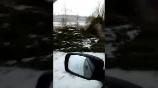 сотни елок под мостом